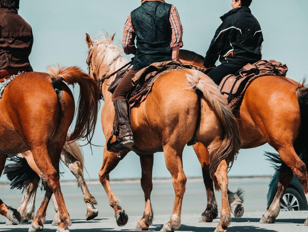 Drömmen att få uppleva din omgivning på en hästrygg kan bli sann